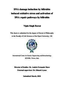 DNA Damage Induction by Bilirubin Induced Oxidative Stress